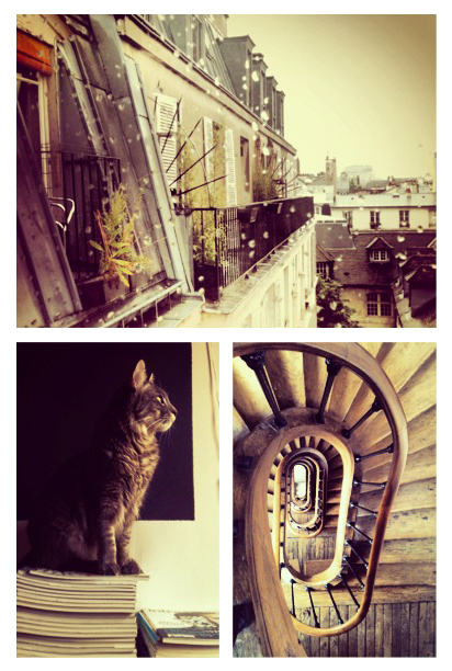 paris-appartement-marais-chat-awayoflooking