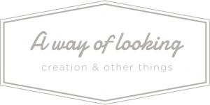 a way of looking Logo